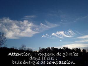 L'énergie de compassion