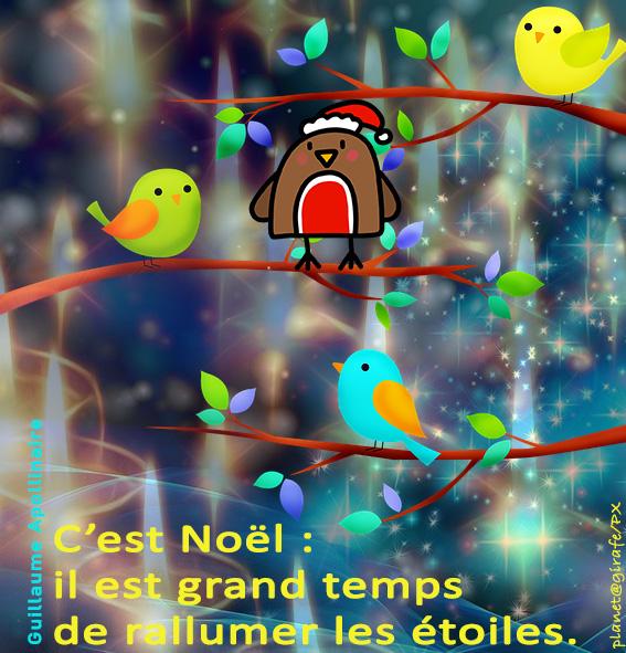 C'est Noël, il est grand temps de rallumer les étoiles....
